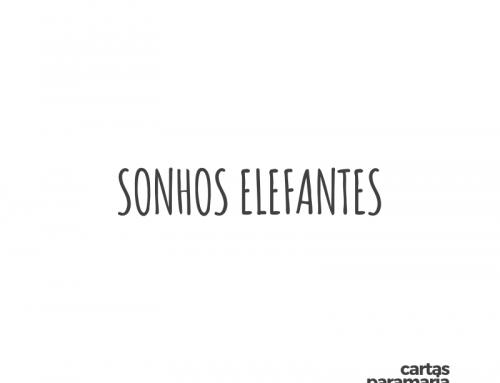 sonhos elefantes | Allan Dias Castro